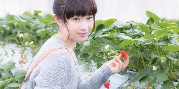 Strawberry Picking and Bamboo Crafts and BBQ